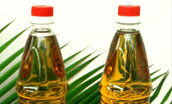 Refined Palm Olein (cooking oil)